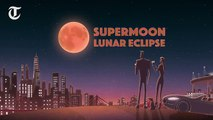 Supermoon lunar eclipse- Where, how and what time can I see it start on Sunday _ Monday and when will it end