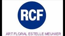 Interview Destin d'une Brindille sur RCF