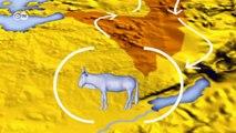 Tierarten im Klimawandel | Projekt Zukunft