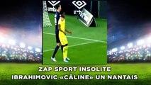 Ibrahimovic «câline» un Nantais, zap sport insolite