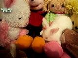 Lapin mignon Animaux se voyant En miroir pour la première fois et jouer dans les jouets
