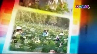 Phim Ong Trum Viet Nam THVL1 Tap 16 a Xem full tai