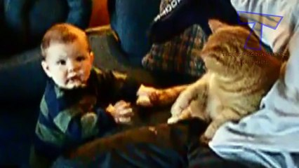 Funny babies annoying cats  - Cute cat & baby compilation
