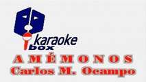 Karaoke Box - Amémonos (In The Style Of / Al Estilo De : Lucha Villa) - (Karaoke)