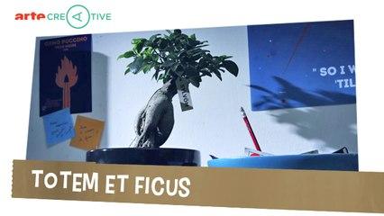 Totem & ficus - Objectivement #21