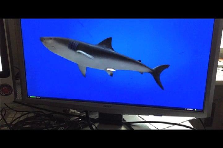 Apple TV Test with a Shark