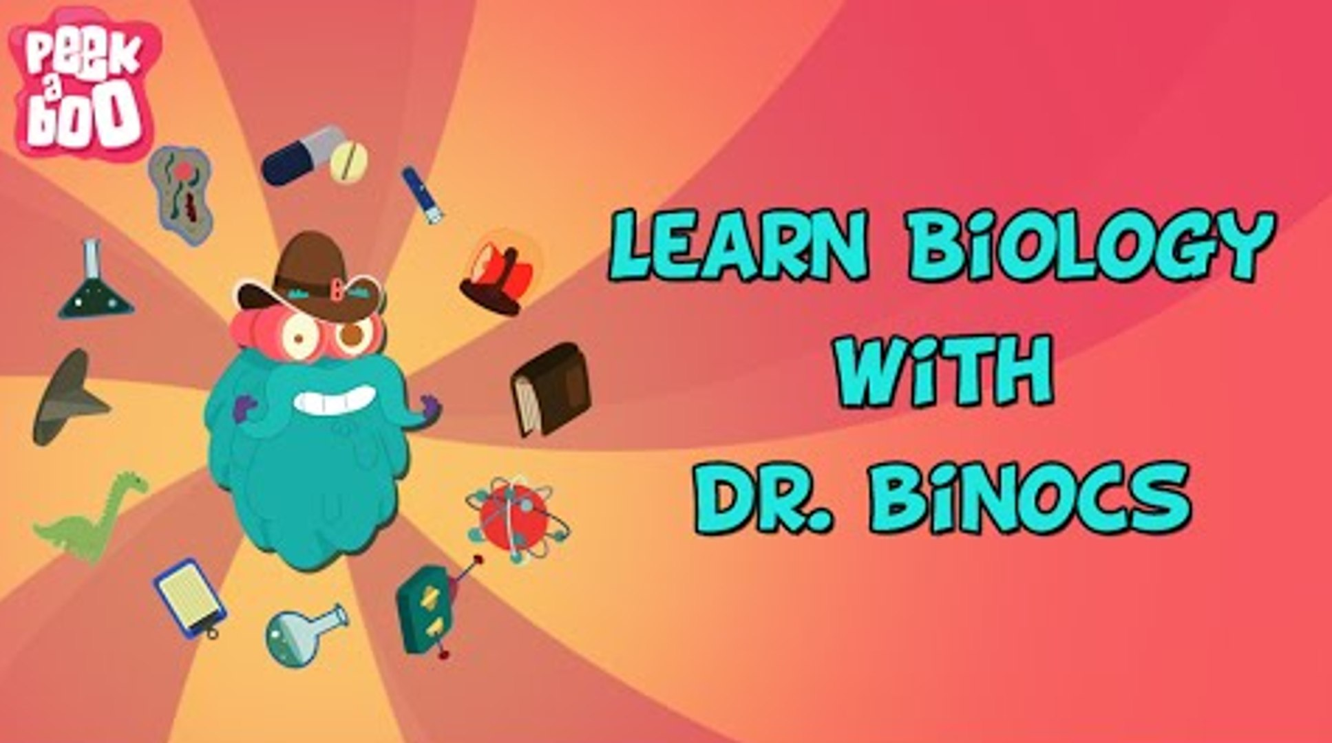 Learn Biology With Dr  Binocs   Compilation