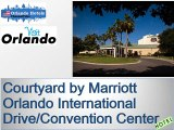 Hotel info and pics of Courtyard by Marriott Orlando International Drive-Convention Center pics