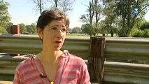 Fièvre catarrhale : la vaccination des bovins a débuté en Bourgogne