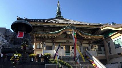 Tokyo Sugamo Kiku Matsuri