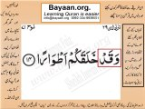 Surrah 071_014 bayaan4all word to word Quran by sheikh imran faiz The easiest way to learn Word by word meanings of Qura
