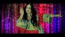 ARIA BAND Gonjeshkake Telayee Official Video 2013 HD