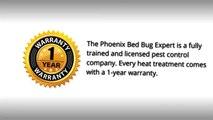 Apache Junction AZ Bed Bug Exterminator - 623-552-4815 _ Bed Bug Treatment