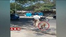 Even a Dog follows Traffic Rules