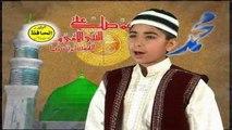 Sallal Laahu Ala Muhammad - Hafiz Sohail Ahmed Mashoom - Roza Da Janan Volume 9