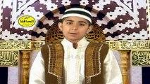 Gwara Ma Lidal Madine - Hafiz Sohail Ahmed Mashoom - Roza Da Janan Volume 9