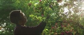 Trailer Una Pasteleria en Tokio (Español)