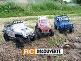 RC Modélisme Nantes : Scale Trial Crawler 4x4 Butte de la Roche 44 Loire Atlantique Grand Ouest