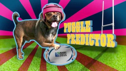 Canada v Romania - Puggle Predictor - Rugby World Cup 2015
