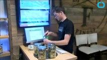 Recreational Marijuana in Oregon May Be Contaminated