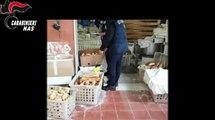 Roma - sequestrati 400 quintali di prodotti da forno ed alimenti