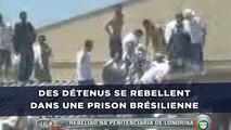 Des détenus se rebellent dans une prison brésilienne