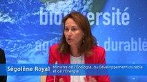 Ségolène Royal ouvre la 6ᵉ réunion annuelle du forum européen pour la réduction des risques de catastrophe
