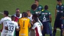 Brésil : l'arbitre l'expulse puis revient sur sa décision et le fait revenir sur le terrain - Palmeiras