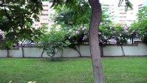 """Апартаменты для аренды в средний сезон, Испания, Бенидорм. Недвижимость в Испании - """"SpainHomes.es"""""""
