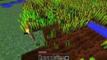 UNA GRANJA DE LOCOS!! #DIMINUTOS3 | Episodio 7 | Minecraft Supervivencia | Willyrex y sTaXx