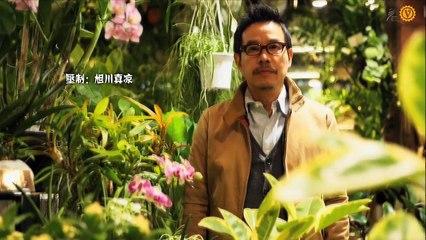 植物男子陽台星人2 第9集 Verandar 2 Ep9