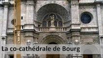 Visite de l'Ain n°01, la co-cathédrale de Bourg en Bresse (d)
