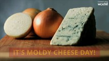 Today is Moldy Cheese Day