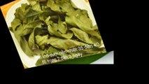 Cách làm bột trà xanh tại nhà [chuyengiatra.com]