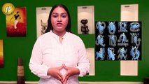 Pisces-मीन - ASTROLOGY AND PREDICTIONS FOR THE WEEK STARTING FROM 12TH OCT - 18TH OCT 2015 BY ASTROLOGER SHWETA