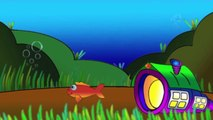 Çizgi film PEPE - Pepe ve Turuncu Yengeç (Deniz canlıları)