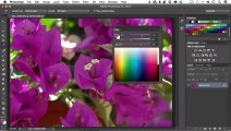 How to Change Color in Photoshop With Color Panel | Photoshop Video Tutorial