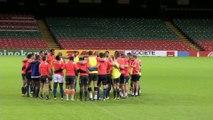 Rugby - CM : Les Bleus au révélateur irlandais