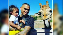 Awww!!! Chris Brown & Royalty Get 'Photobombed' By Giraffe