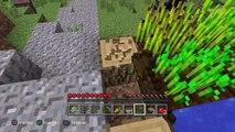 Minecraft: PlayStation