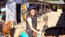 Les écuries de Trangy poney club et centre équestre