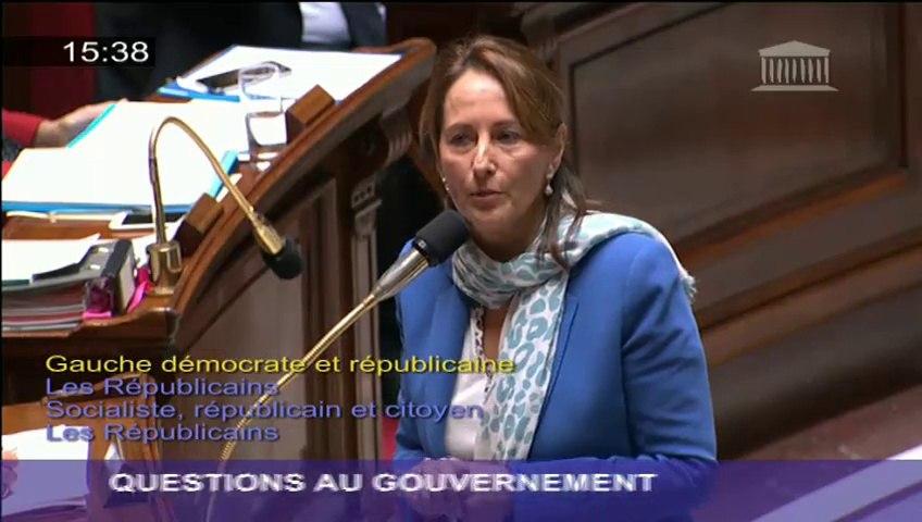 Air France : Ségolène Royal répond à une question au Gouvernement