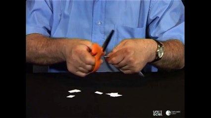 La danse des petits bouts de papier