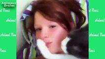 Vignes de joli chat Vines animaux 2015 [VIDEO HD LONG]