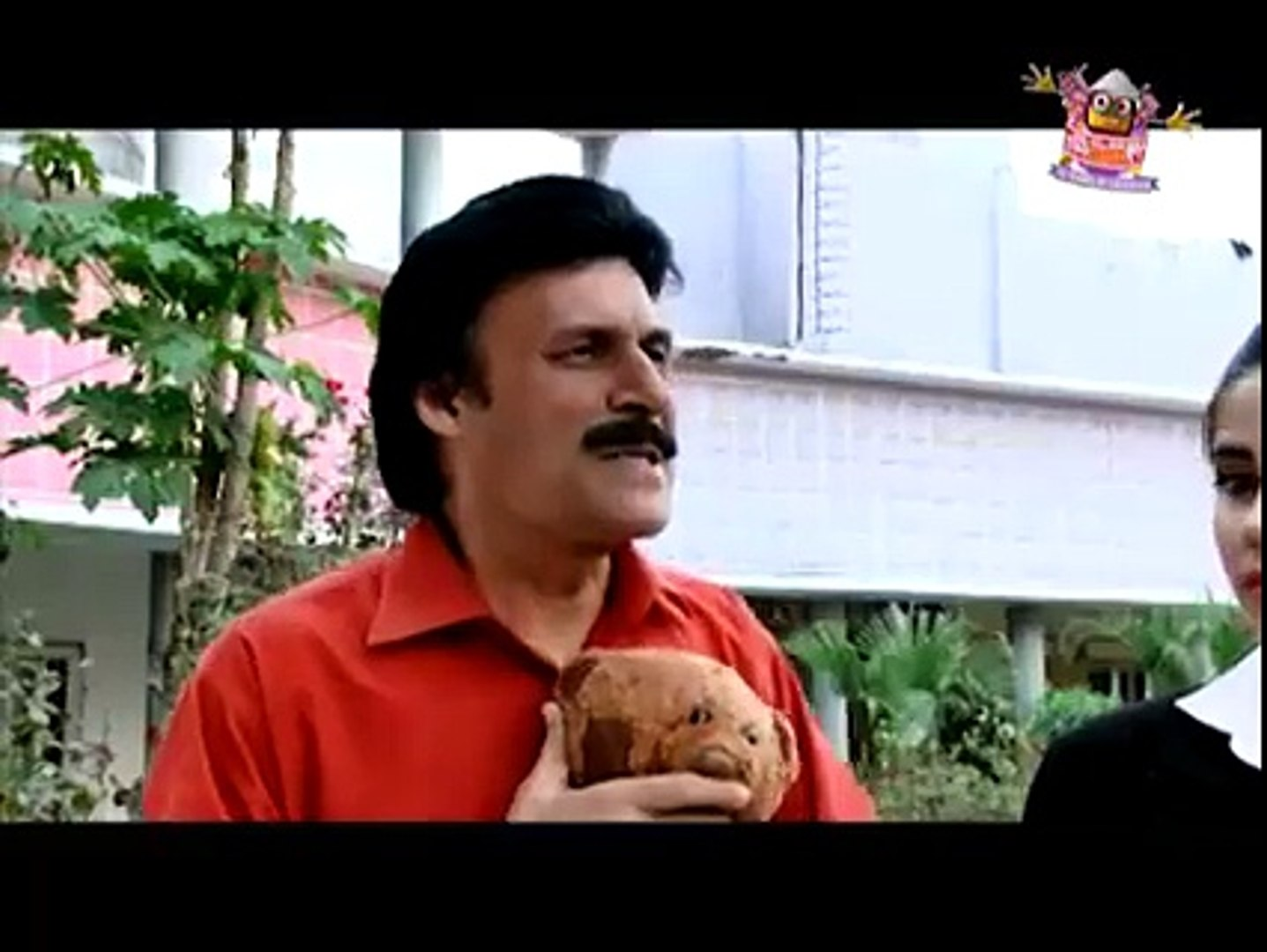 CID Team in Sindh - video dailymotion
