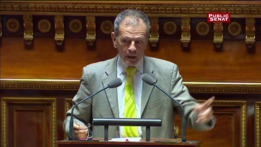 « L'immigration d'aujourd'hui, ce sont les terroristes de demain » affirme le sénateur non-inscrit Jean-Louis Masson