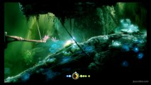 Ori-and-the-blind-forest-soluce(5)maîtrise-Double-Saut-partie2