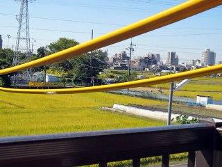 集団ストーカー被害 平成27年10月14日岩倉東小学校で助けてと悲鳴