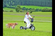 trottinette électrique bikeboard 3 roues homologuée route pmr, handi , camping car