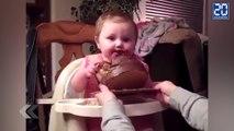 Il mange un gâteau au chocolat pour la première fois ! - Le rewind du jeudi 15 octobre.